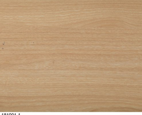 Surface Decor melamine sheets suppliers
